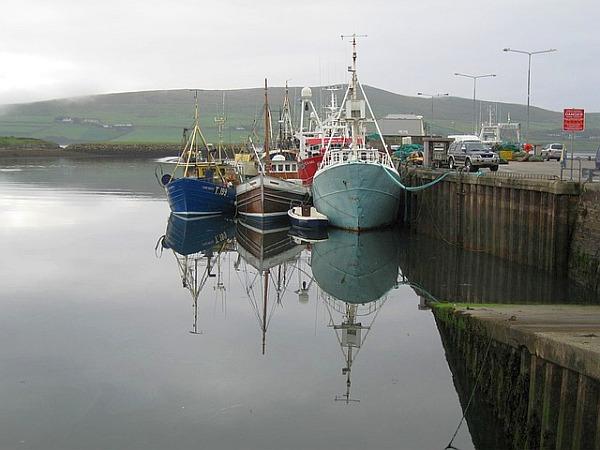 dingle boats