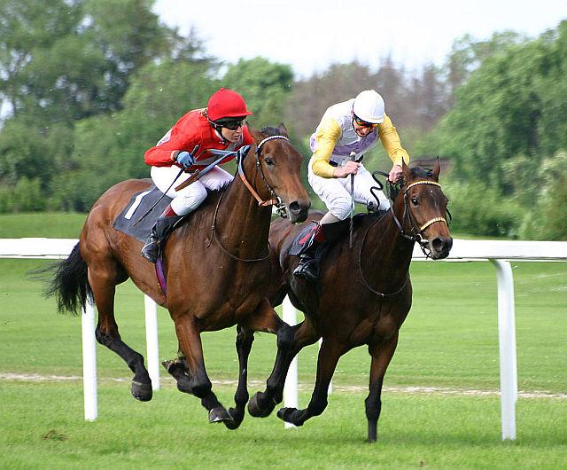 killarney races 2018